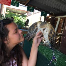 Eagle Encounters South Africa