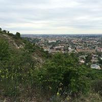 Sas Hill Nature Reserve