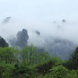 Wulingyuan Scenic and Historic Interest Area of Zhangjiajie
