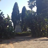Публичный сад