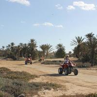 Поездки на квадроциклах (Quad Evasion et Passion)