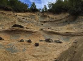 Reserva nacional Magallanes
