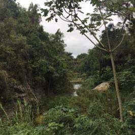 Водопад Эль Ничо