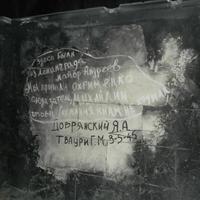 Выставочный комплекс «Ленэкспо»