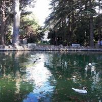 Parc Sama