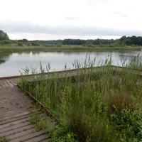 Potteric Carr Nature Reserve