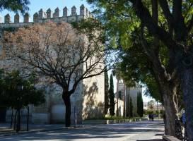 Camara Oscura Alcazar Jerez de la Frontera