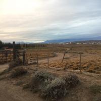 Safari Experience - Patagonia Profunda