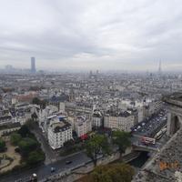 Экскурсии по Собору Парижской Богоматери