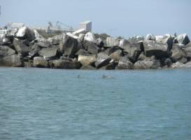 Koombana Bay
