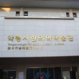 Daegu Yangnyeongsi Museum of Oriental Medicine