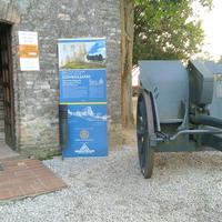 Castle of Conegliano