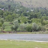 Betab Valley