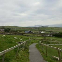 Irish Famine Cottages