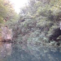 Parco Avventura del Levigliese