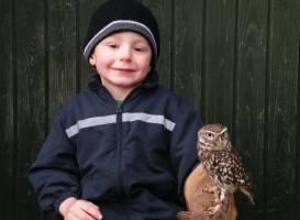 Woodlands Falconry and Bird of Prey Centre.