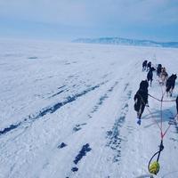 Байкальский центр ездового спорта