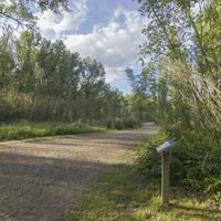 Parc Municipal de la Mitjana