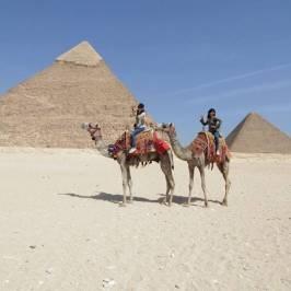 Nature Travel Egypt Tour - Day Tours