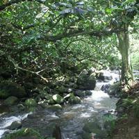 Faarumai Waterfalls