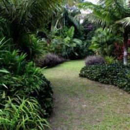Rainbow Botanic Gardens