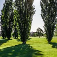 Golf Club Valdichiana