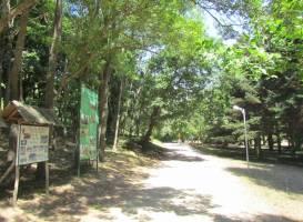Университетский ботанический сад