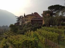 Castello Rametz - Wine Museum