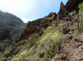 Canyon Tenerife