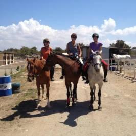 Alexandros Riding Stables