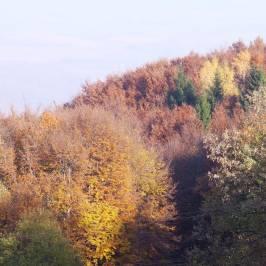 Lover Kalandpark Sopron