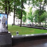 Сад Андрея Петрова