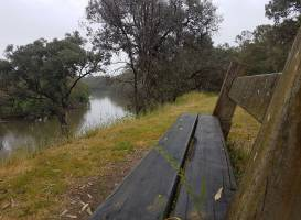 Murray River Trail