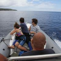 Magical Niue Sea Adventures
