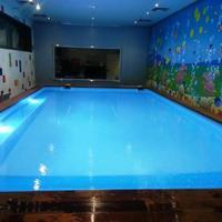 Star Pool Center