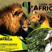 Dark in Africa Safaris