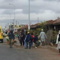 Antananarivo Flower Market