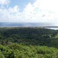 Mount Maungapu