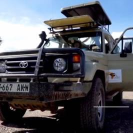 Taste of Afrika Tours & Safari