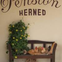 Pension Herned