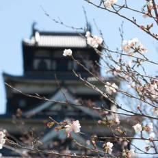Hotel Park Side Hiroshima Peace Park