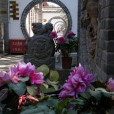 Xi'an Qixian (7 Sages) Youth Hostel