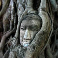 Somjai Place Ayutthaya