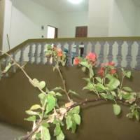 El Qasr Two-Bedroom Chalet 2