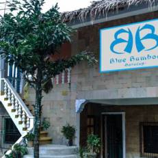 Blue Bamboo Hostel