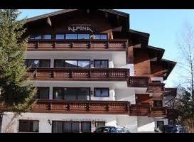 Appartementhaus Alpina (Бад Хофгастайн)
