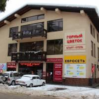 Apartment Gorniy Tsvetok