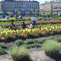 Bordeaux City Centre Apartment