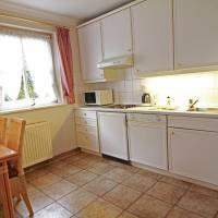 Haus-Meisennest-Wohnung-Star