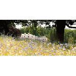 Великобритания: открылся новый эко-отель Coworth Park,  сети Dorchester Collection